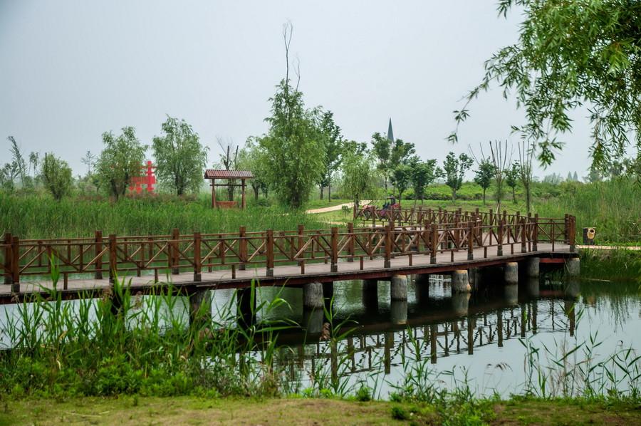 金晖桥(金婚)