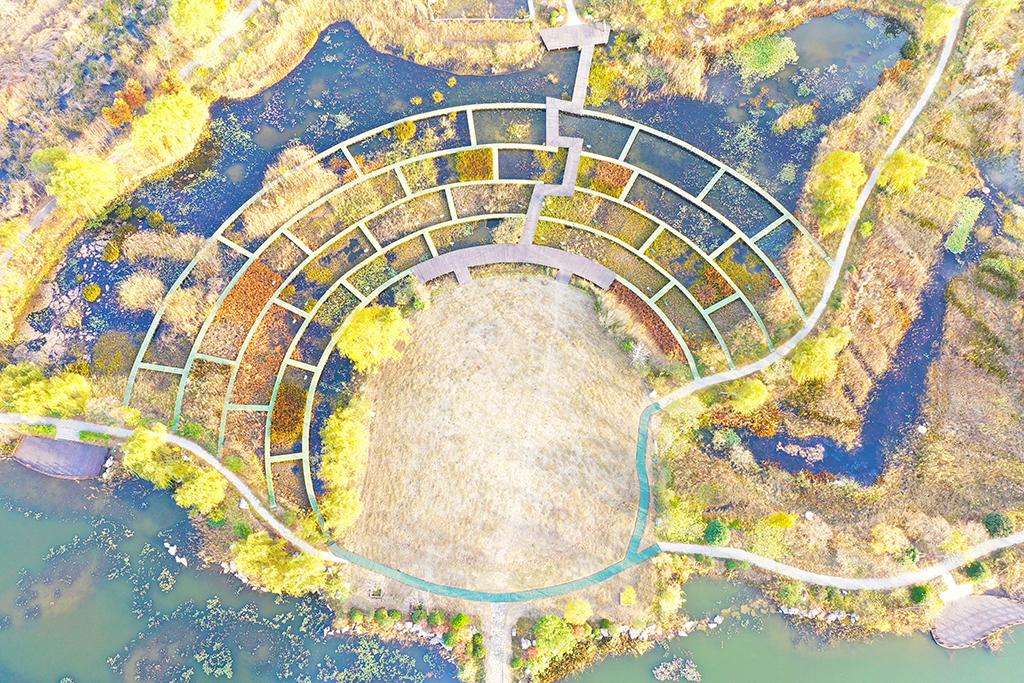 水生植物园