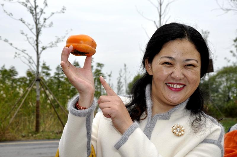 火柿节(十 月下旬)