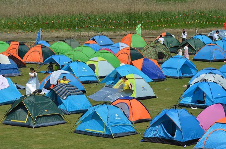 第四届洪泽湖湿地露营篝火晚会报名开始
