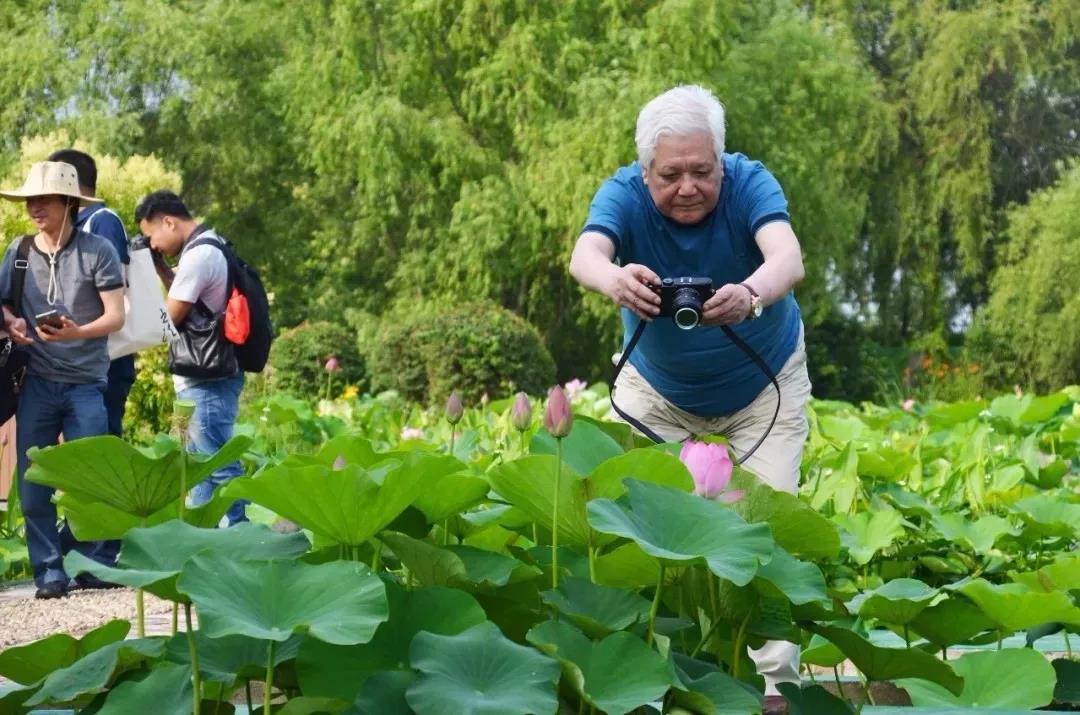 用照片说出洪泽湖湿地景区的故事,千元奖金和旅游大奖等你来领