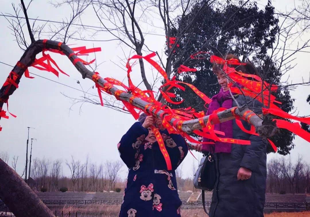 在一起,过福年——洪泽湖湿地春节活动